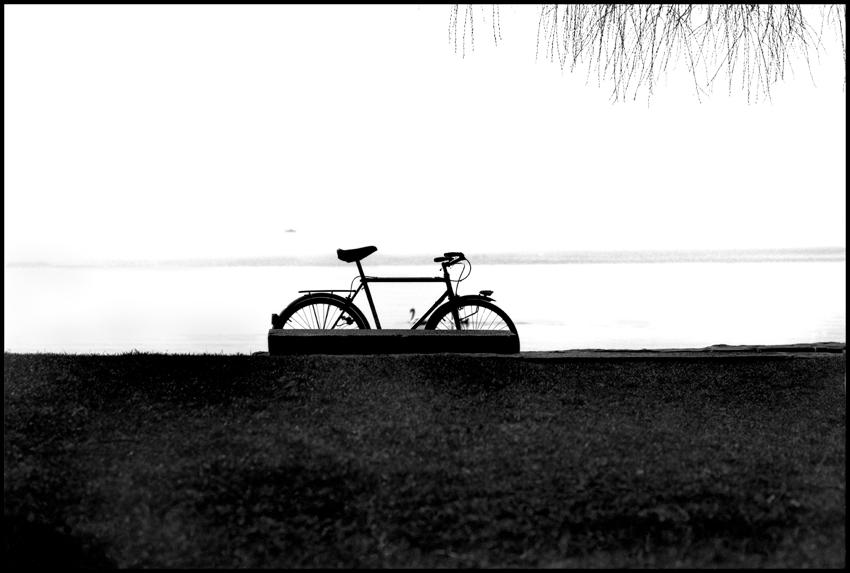 97.Bicycle on Lake Geneva