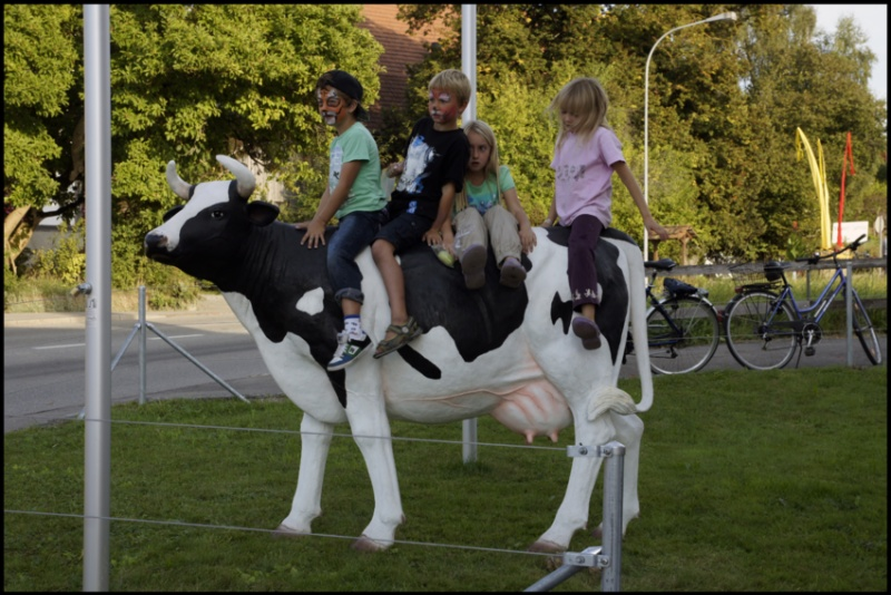 91.cow